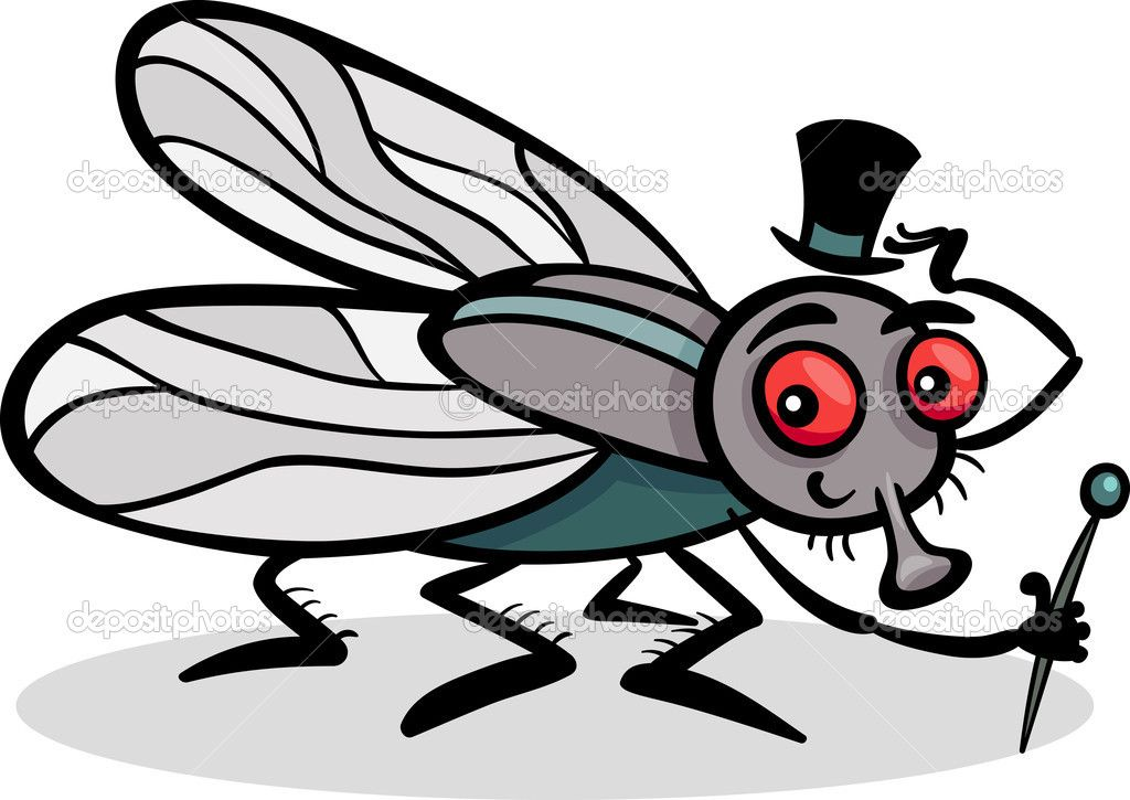 Housefly Insect Cartoon Illustration French Expressions Cartoon Illustration Coloring Books