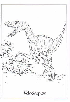 Coloring Page Dinosaurs 2 Velociraptor Dinosaurs Coloring