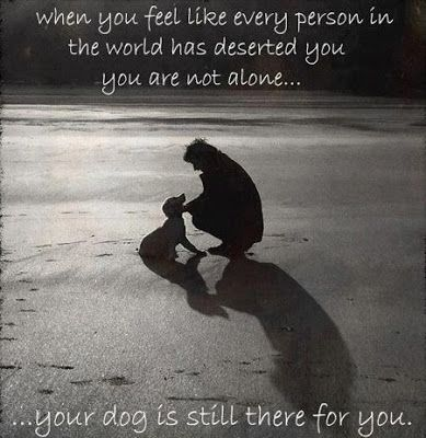 Quotes About Feeling Alone Feel Like Every Person In The World Has Deserted You You Are Not Alone I Love Dogs Dog Love Puppy Love