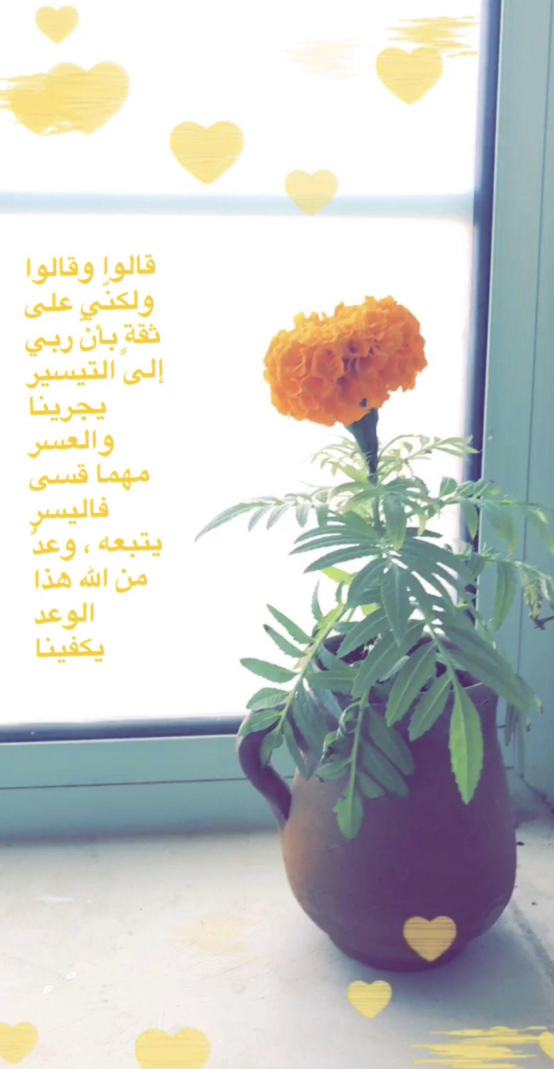إن بعد العسر يسر Light Box Flowers Light