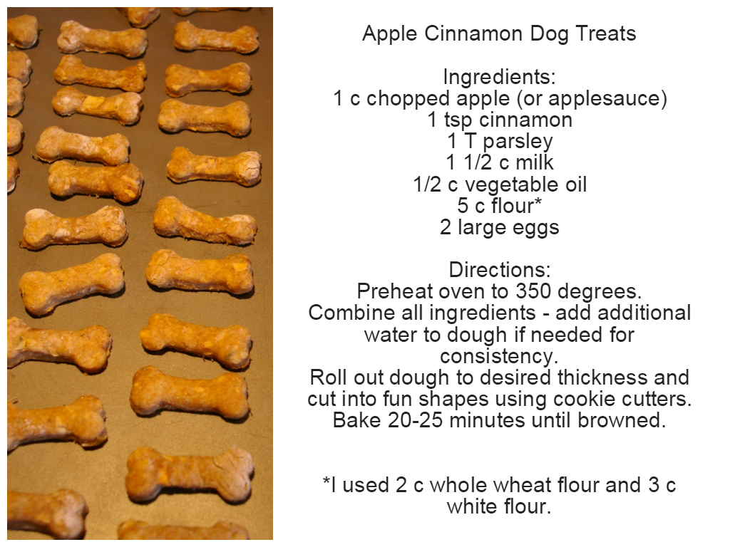 Easy Dog Treat Recipes Without Flour