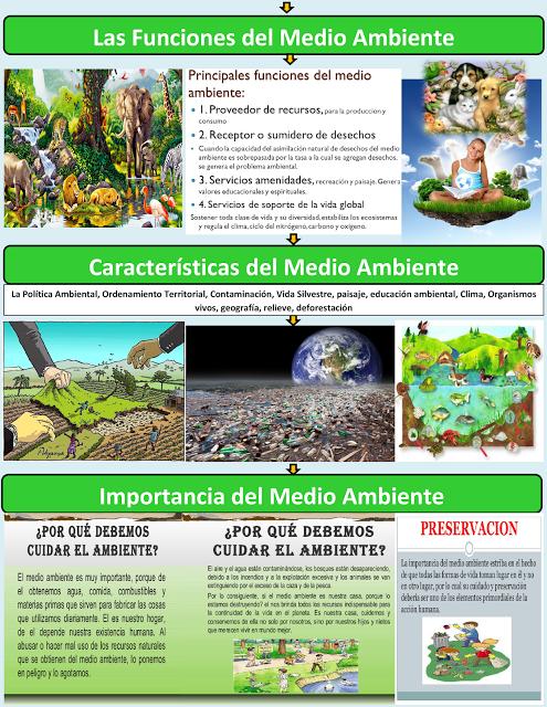 Funciones Características E Importancia Del Medio Ambiente Medio Ambiente Mapa Conceptual Cuidar El Ambiente