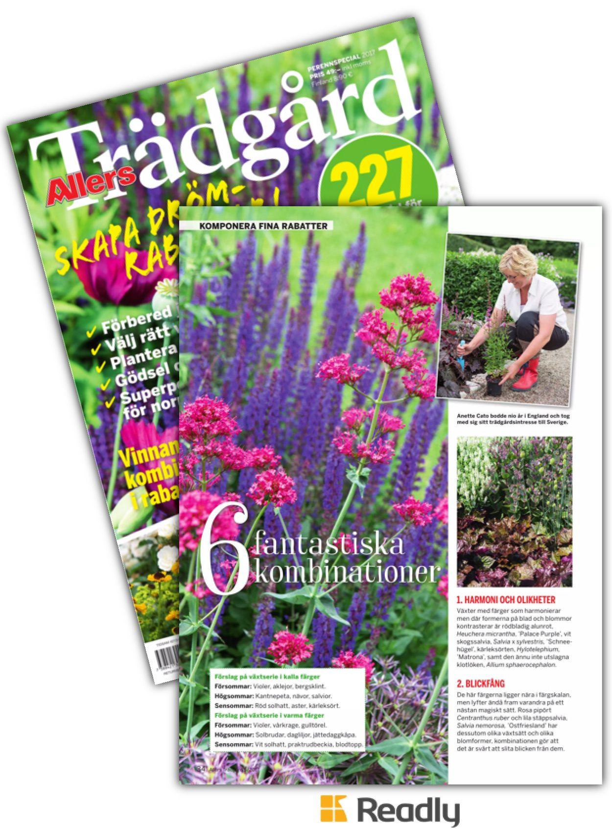 Tips om Allers Trädgård 17-05 sidan 34