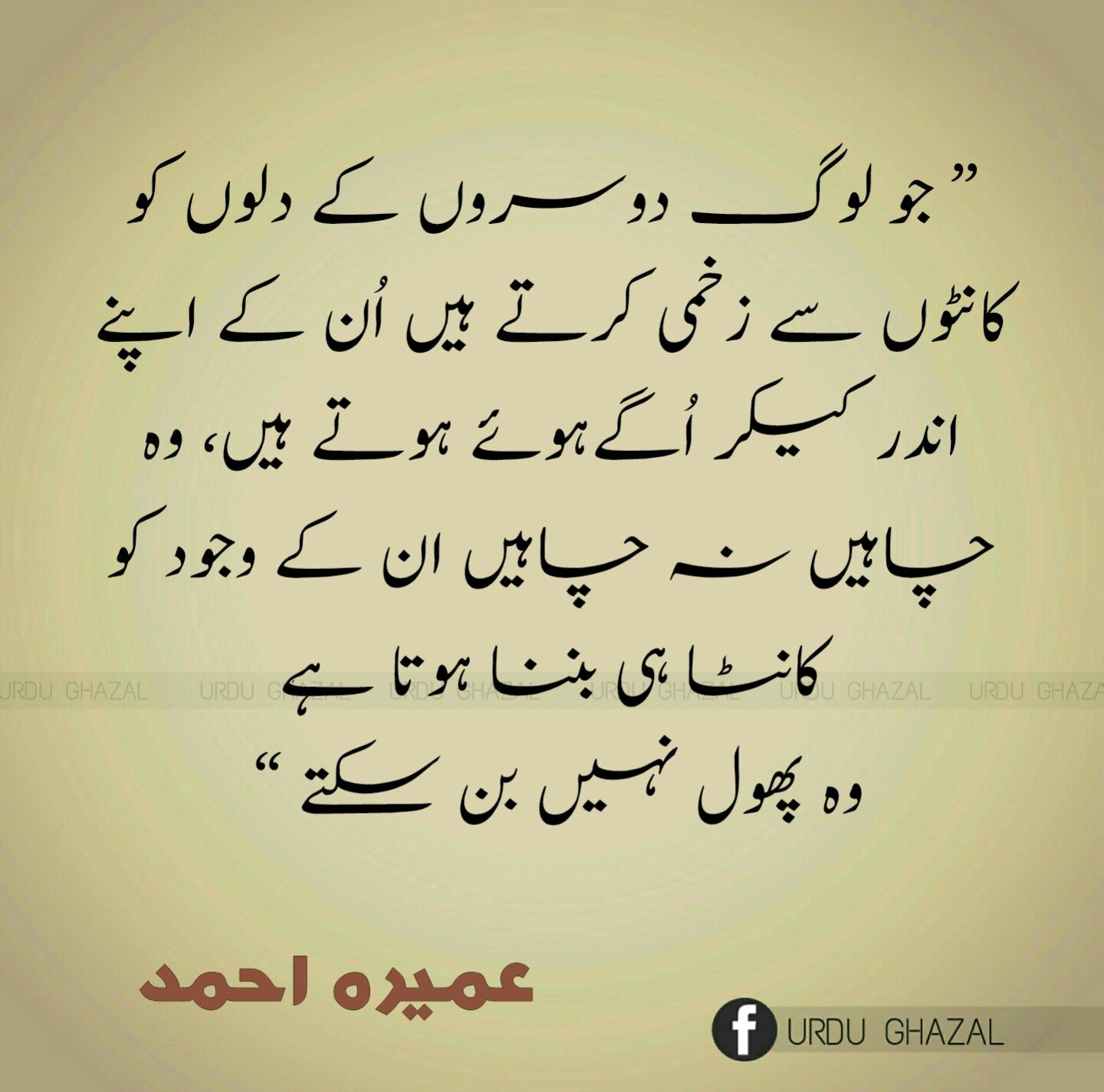 Sheikh Saad Wisdom Urdu Quotes Quotes And