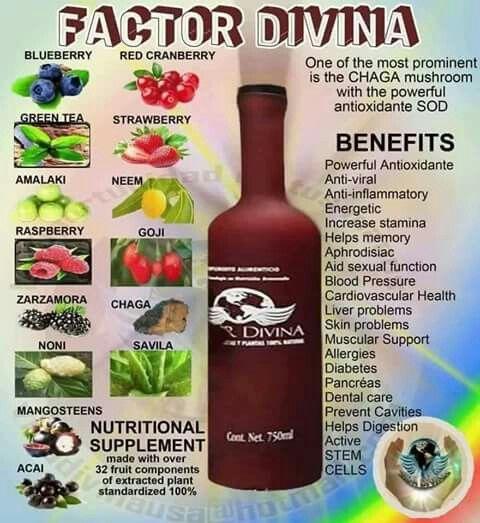 Pin on Vida Divina Products