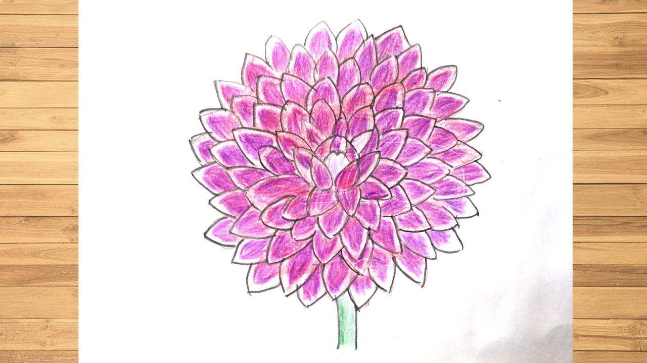 How To Draw A Dahlia Flower Step By Step Drawing Dahlia Flower In 2020 Flower Drawing Images Flower Step By Step Flower Drawing