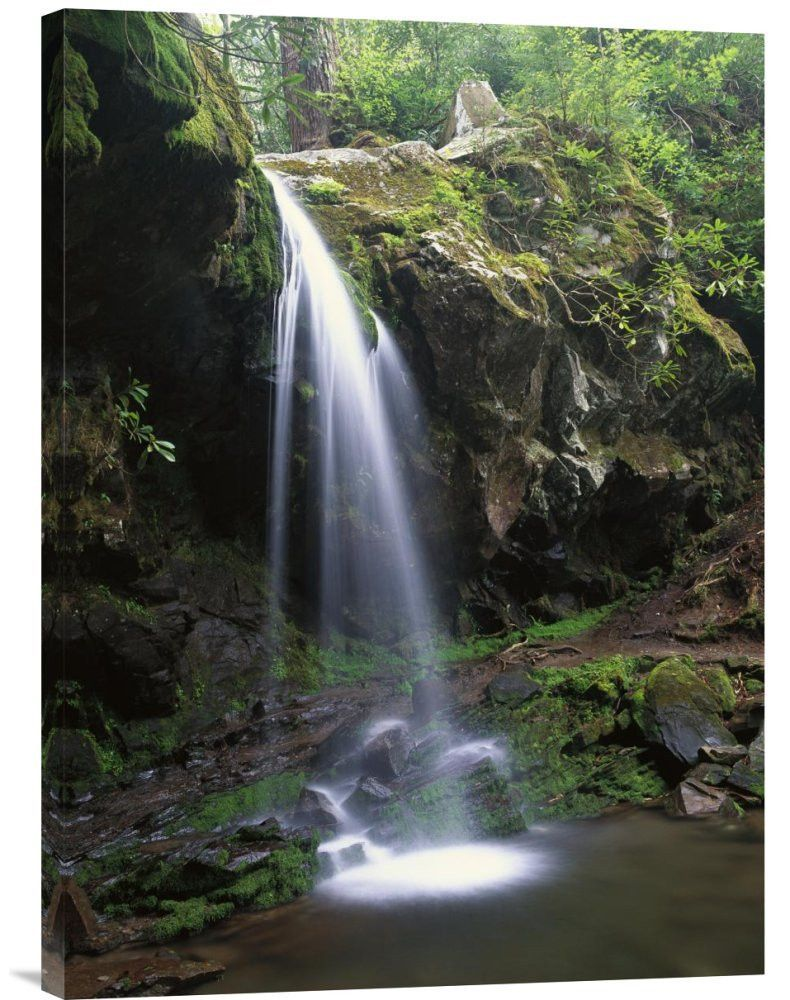 Grotto falls and roaring fork motor nature trail for Motor para cascada