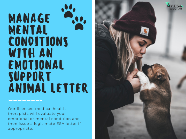 Get An Emotional Support Animal Letter Emotional support