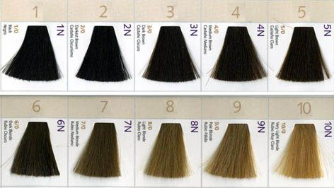 Natural Hair Level Color Chart Google Search Hair Color Swatches Hair Levels 7n Hair Color