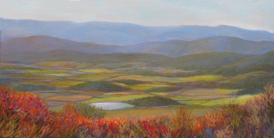 Blue Ridge Parkway Fall, oil 12 x 24 $525 Meg West