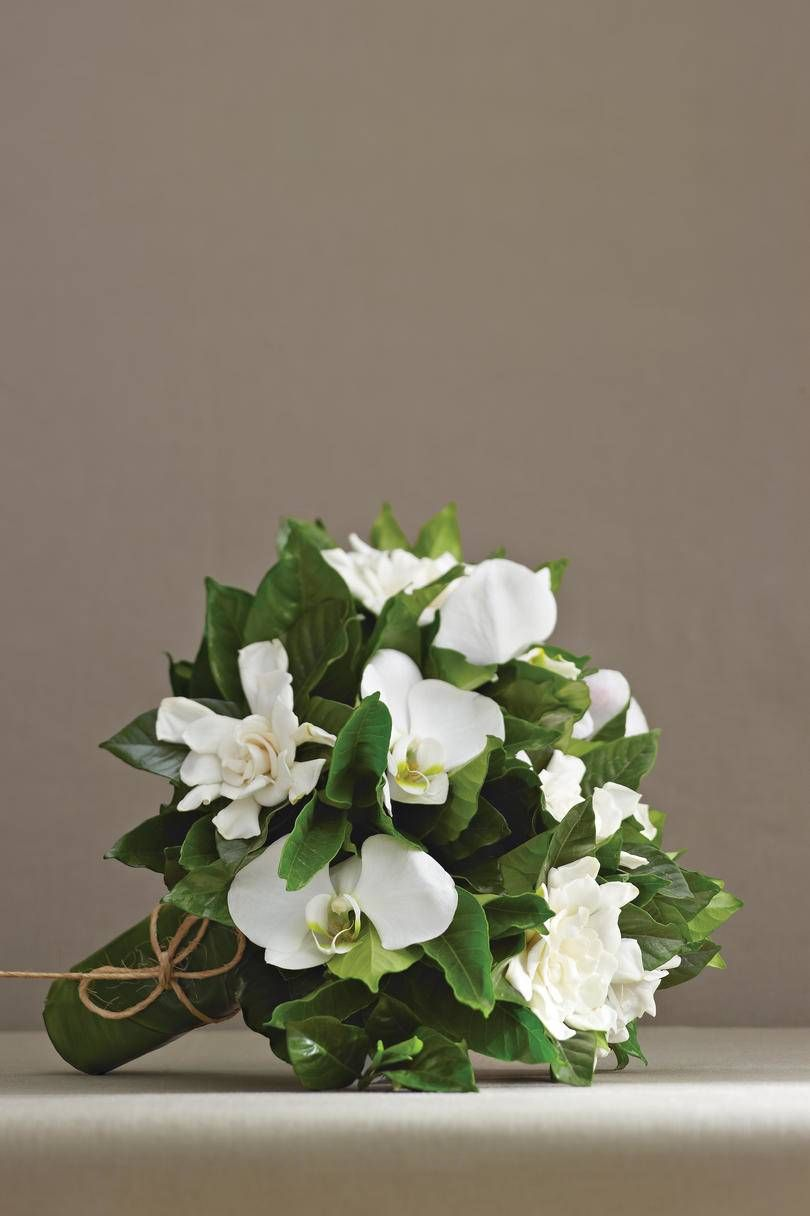 Wedding Flowers By Season Flower Crown Wedding Bridal Wedding Flowers Gardenia Wedding Flowers