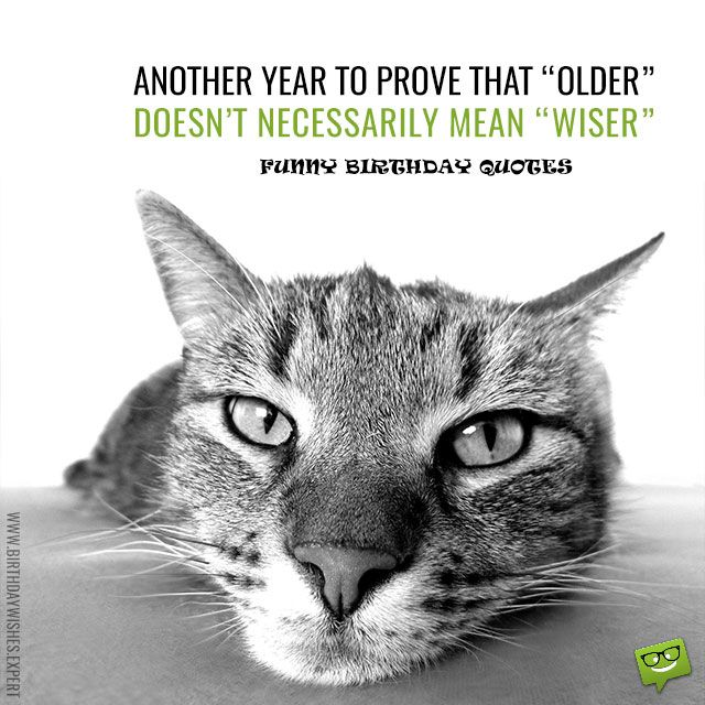 """""""Another year to prove that older doesn't necessarily mean wiser."""""""