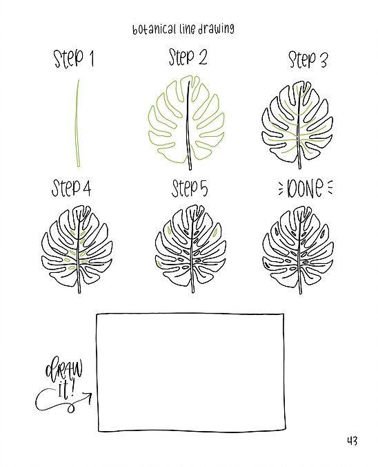 Flower Leaf Line Drawing : Botanical leaf drawing doodles pinterest