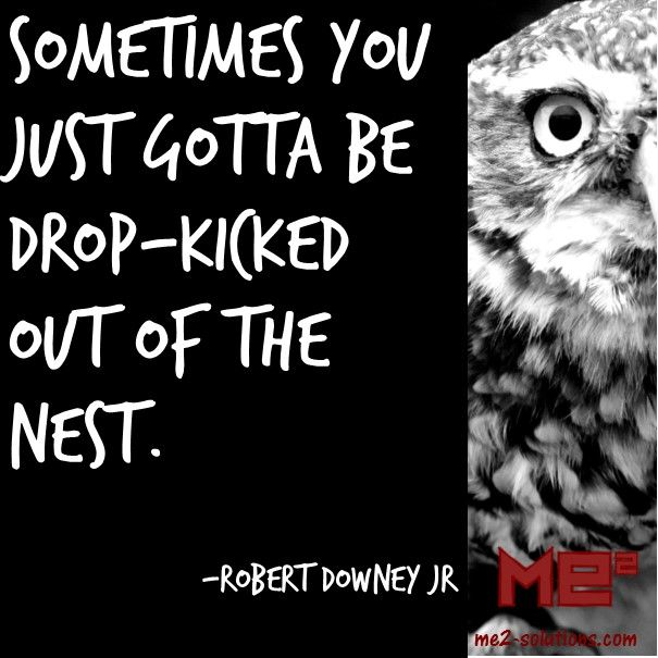 Sometimes you just gotta be drop-kicked out of the nest. -Robert Downey