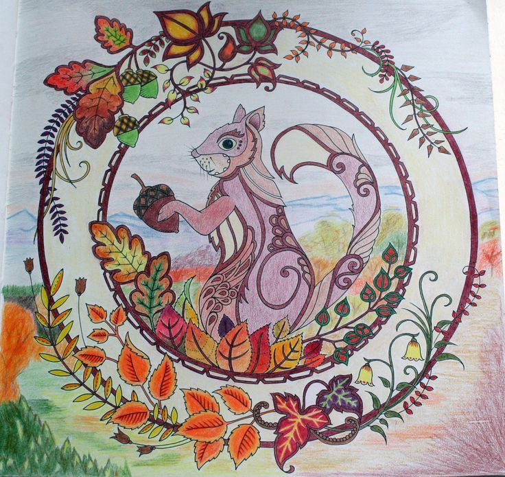 SQUIRREL Enchanted Forest Johanna Basford