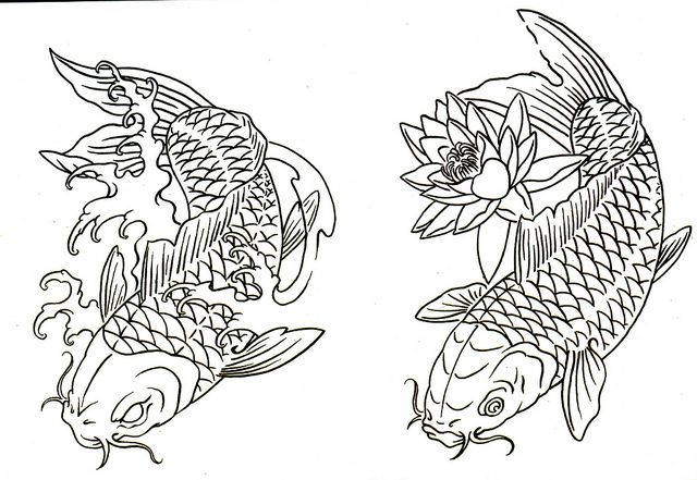 Koi Fish Tattoos Outline