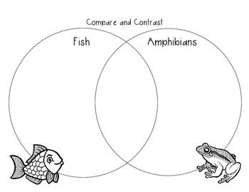 Compare and Contrast Fish and Amphibians Venn Diagram