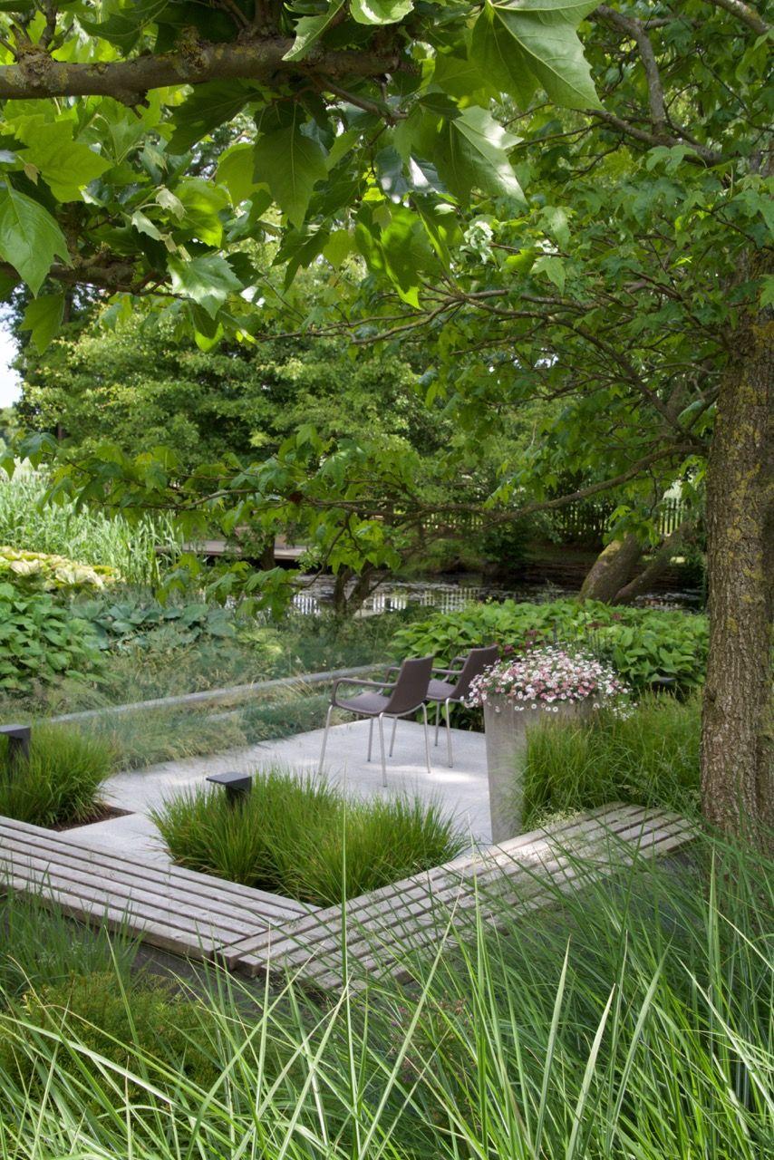 Moderner Grasergarten Garten Gras Modern