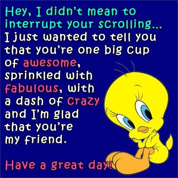 Glad You Re My Friend Tweety Bird Quotes Bird Quotes Cute Friendship Quotes