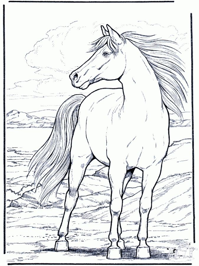 hard horse coloring pages - photo#21
