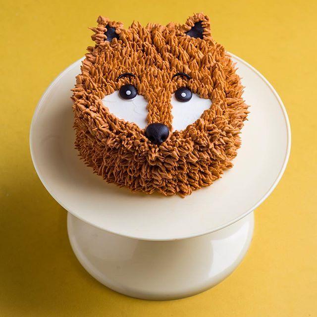 Resultado de imagem para furry cake