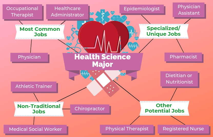 12 Jobs For Health Science Majors in 2020 Health science