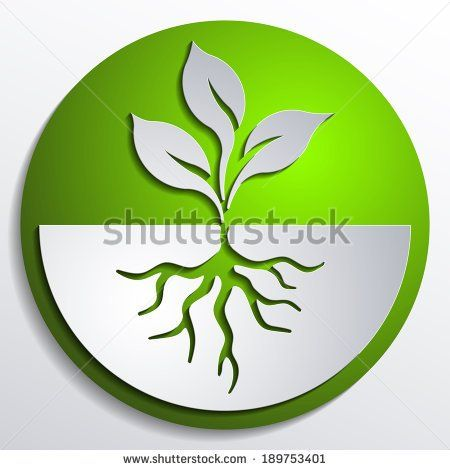 Organic Button Ecological Topic Icon Roots Tree Seedling