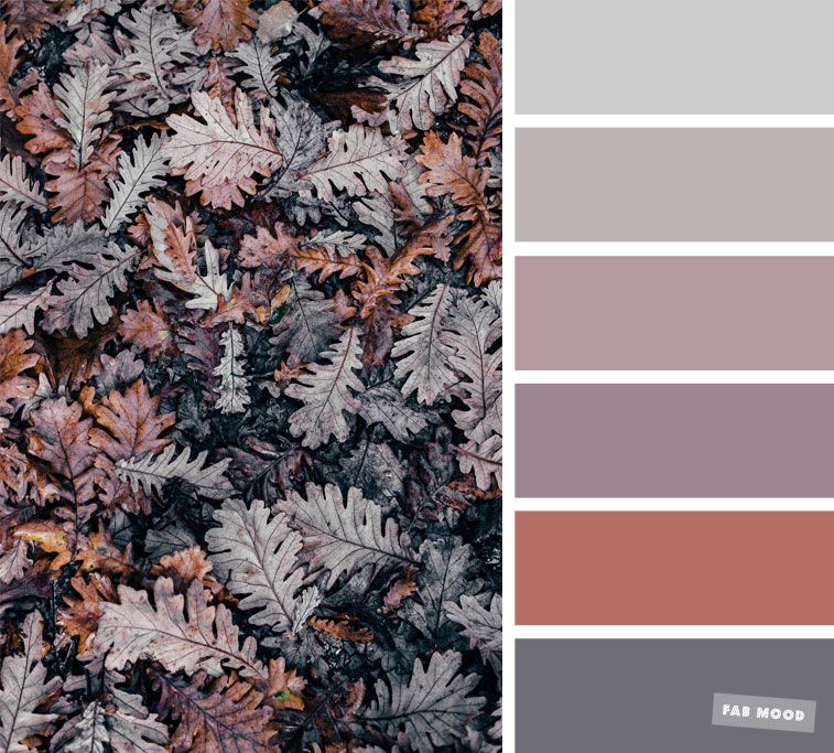 Grey and mauve fall color scheme #autumncolours