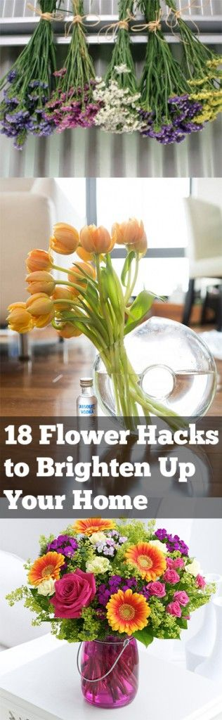 18 Flower Hacks To Brighten Up Your Home