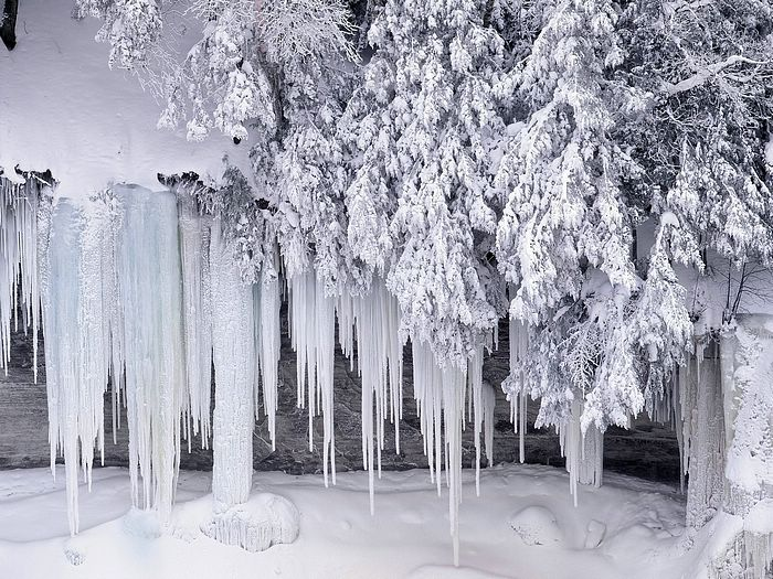 Google image result for httpwallcoonaturewinter frosty winter icicles winter wallpaper id 190055 desktop nexus nature voltagebd Choice Image