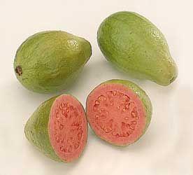 Hoy os traigo una pequeña guía de frutas y plantas exóticas, que os puede ayudar a conocer un poco mas, usos y consumos, es breve, pero puedes ver lo ppal.