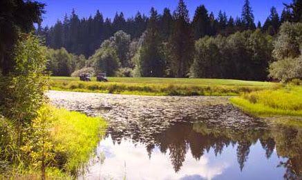 14+ Cedars golf course brush prairie washington info