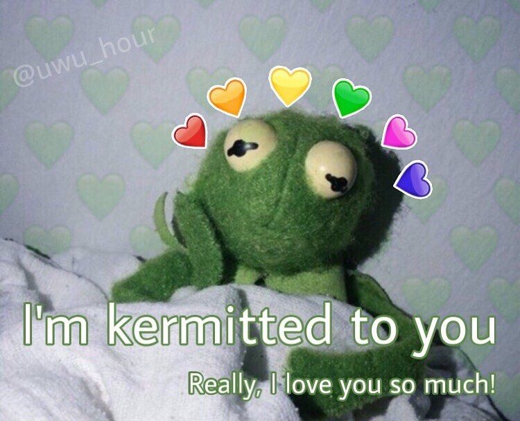 Morning All It S Friday Whoop Whoop Tag A Cutiee Xo Follow Wholesome Heartt For More Tag Wholesome Memes Cute Love Memes Love You Meme