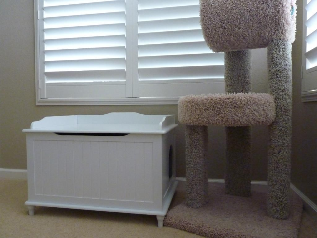 Decorative Litter Box Covers Litter Box Enclosure Give Your Cat Comfy Place To Go Awesome