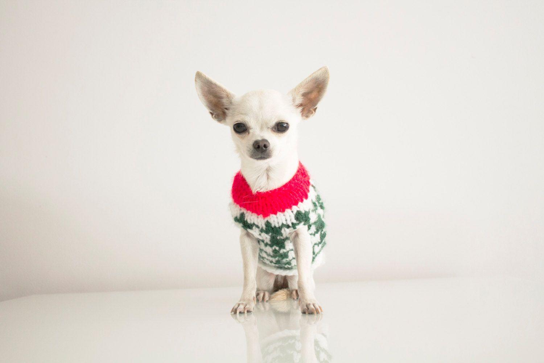 Sweater dog // Jersey perro frida#intuitiva de fridavestida en Etsy ...