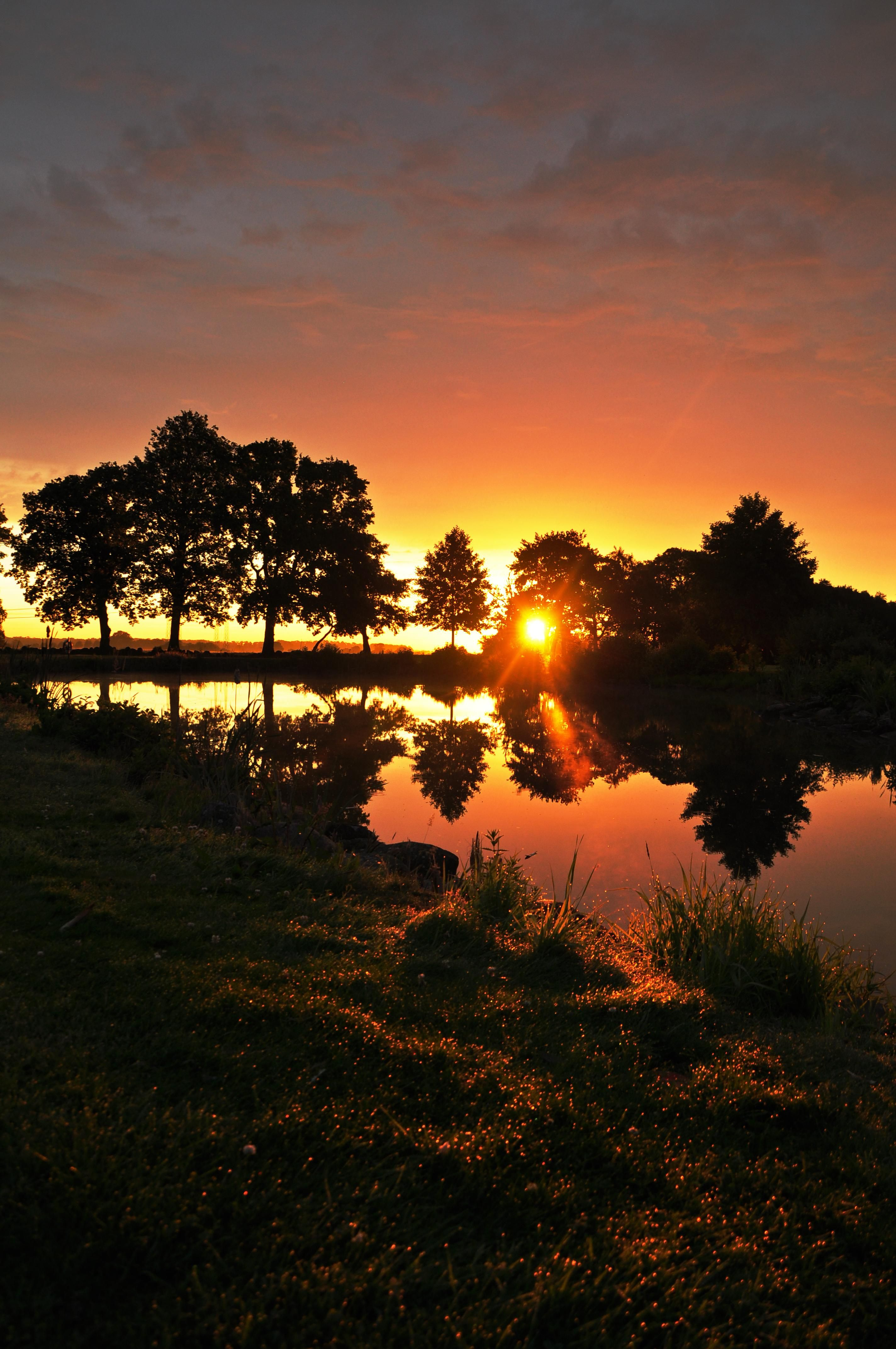 Sunrise At My Local Golf Course In Sweden 2848x4288 Oc Landscape History Pictures Sunrise