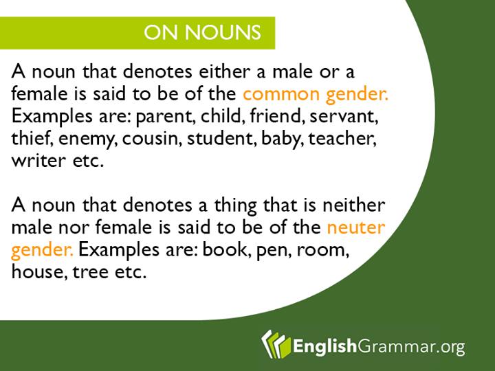 English Grammar More On Nouns And Other Grammar Essentials Here Http Www Grammarcheck Net Essential Grammar Rules