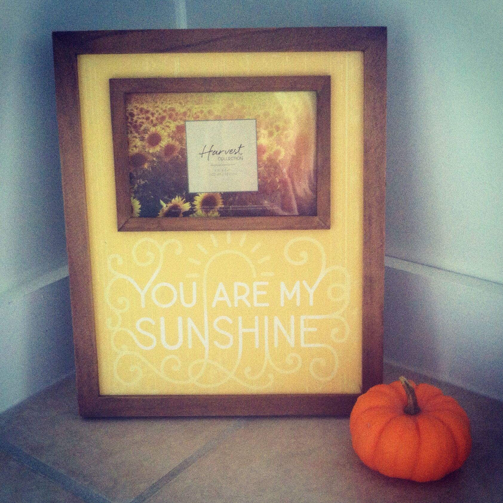 Fall Decor Picture Frame You Are My Sunshine Kohls My