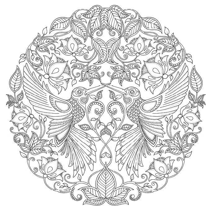 Tajemny Ogrod 04 Jpg 680 680 Mandala Coloring Pages Bird Coloring Pages Mandala Coloring