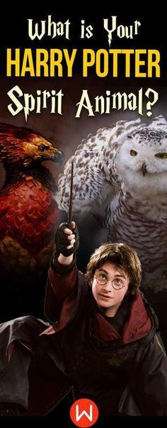 Hogwarts Quiz: What is Your Harry Potter Spirit Animal? in
