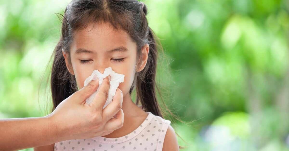 Kidsafe Allergies Which Kidsafe Blend Should I Choose