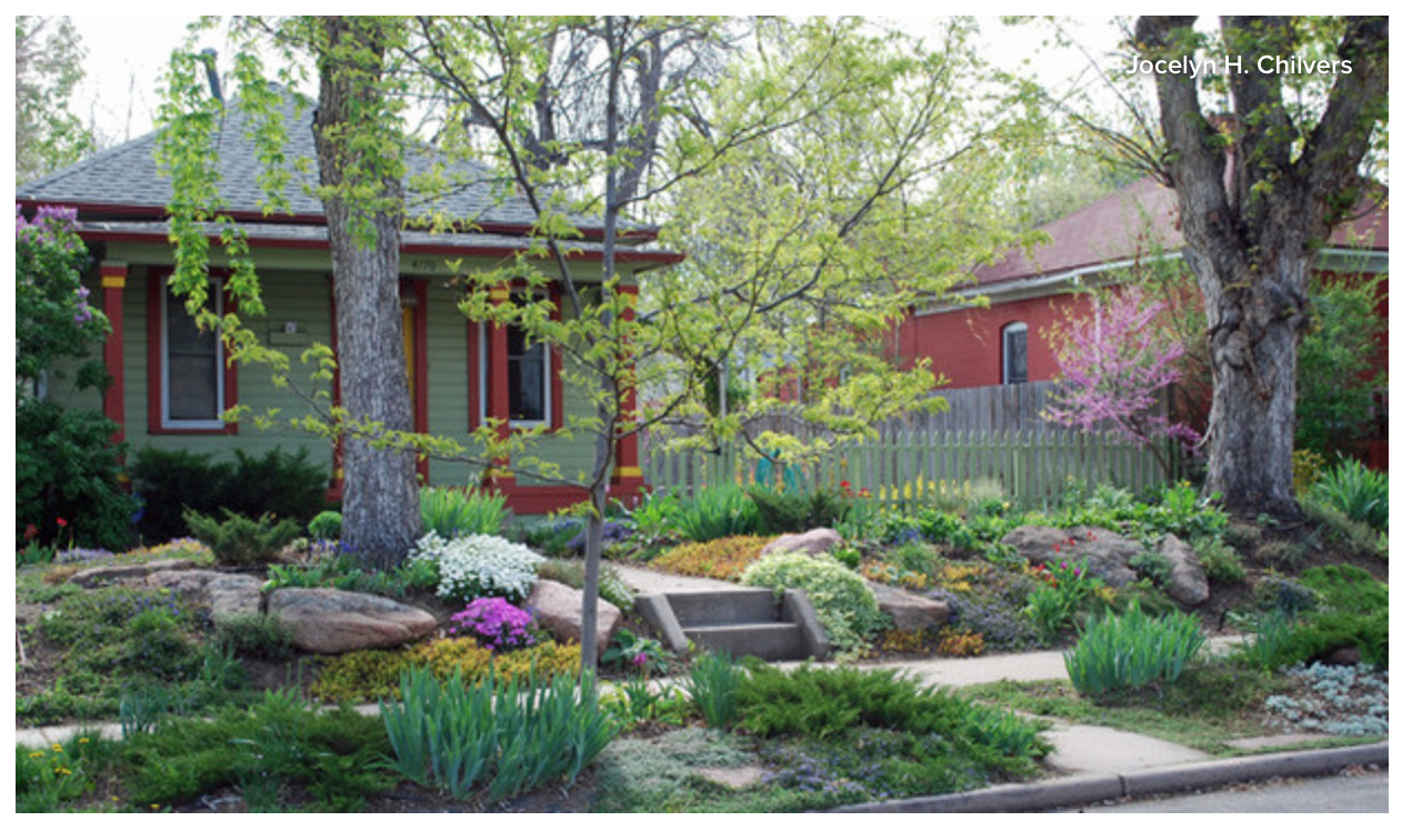 No grass front yard Using non-natives. Looking at how ... on Non Grass Backyard Ideas id=89919