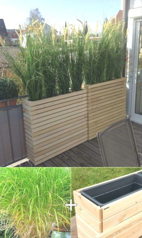 Photo of Plant tall lemongrass in the tall wooden planters for the balcony …,  #balconTerrasse #Balc…
