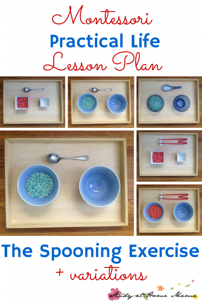 practical life exercises in montessori Maria montessori teaches us to present to the  montessori teacher training and parent resources certified online  motor education & exercises of practical life.