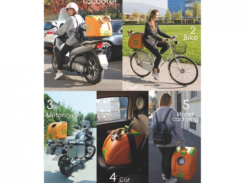 POW - uusinta uutta koirien kuljettamiseen moottoripyörällä tai skootterilla | Uutiset | Motouutiset