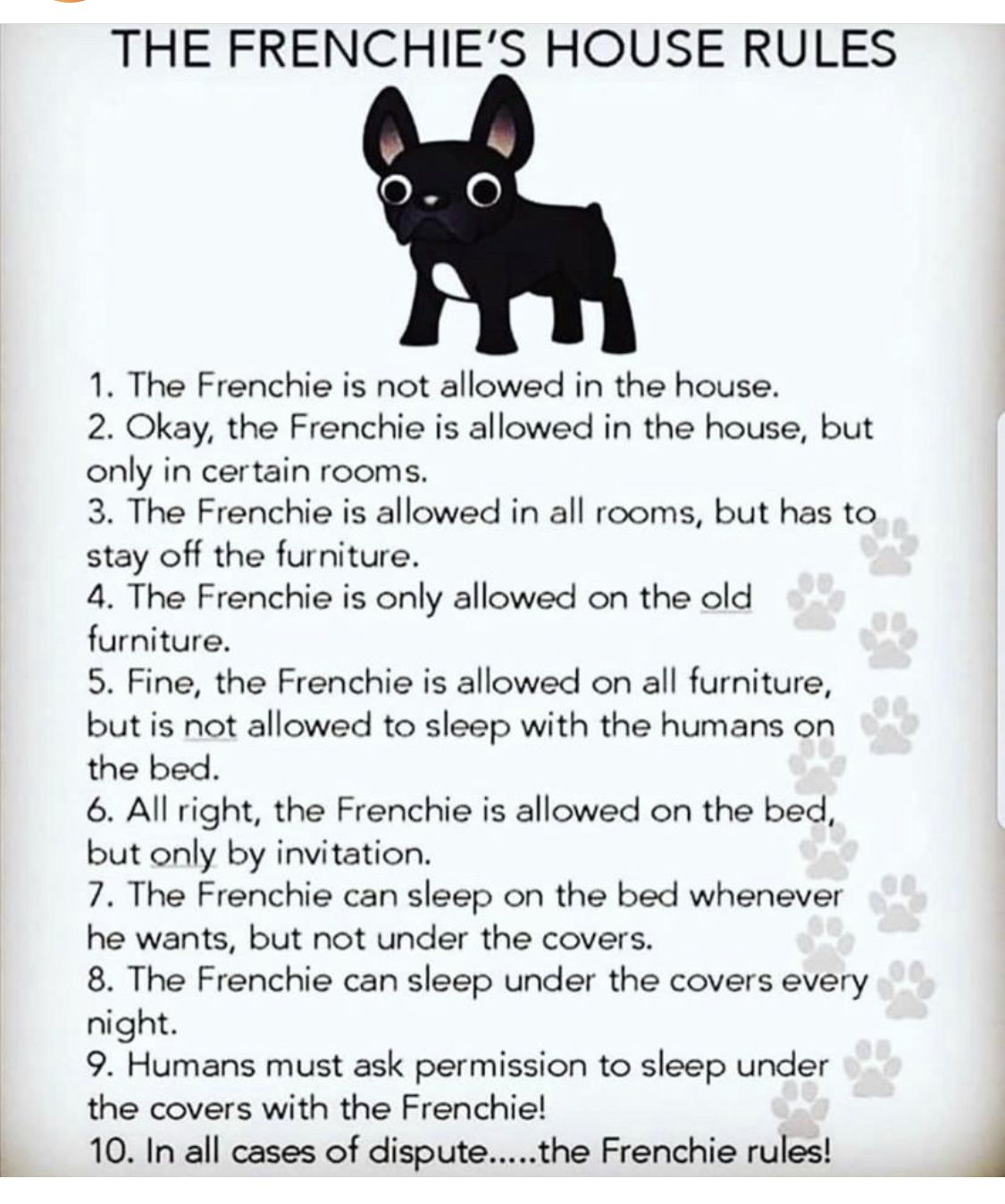 Pin By Russo Bars On My Boy French Bulldog Puppies Cute French