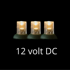 12 Volt Led Light Set Warm White Green Wire Led Lights Warm White Light