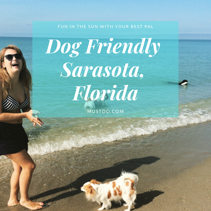 Dog Friendly Places In Sarasota Florida Must Do Visitor Guides Sarasota Perfect Beach Vacation Best Island Vacation