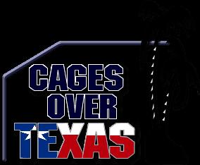 Cages Over Texas Pool Enclosures Texas Pools Pool Enclosures Lanai Patio