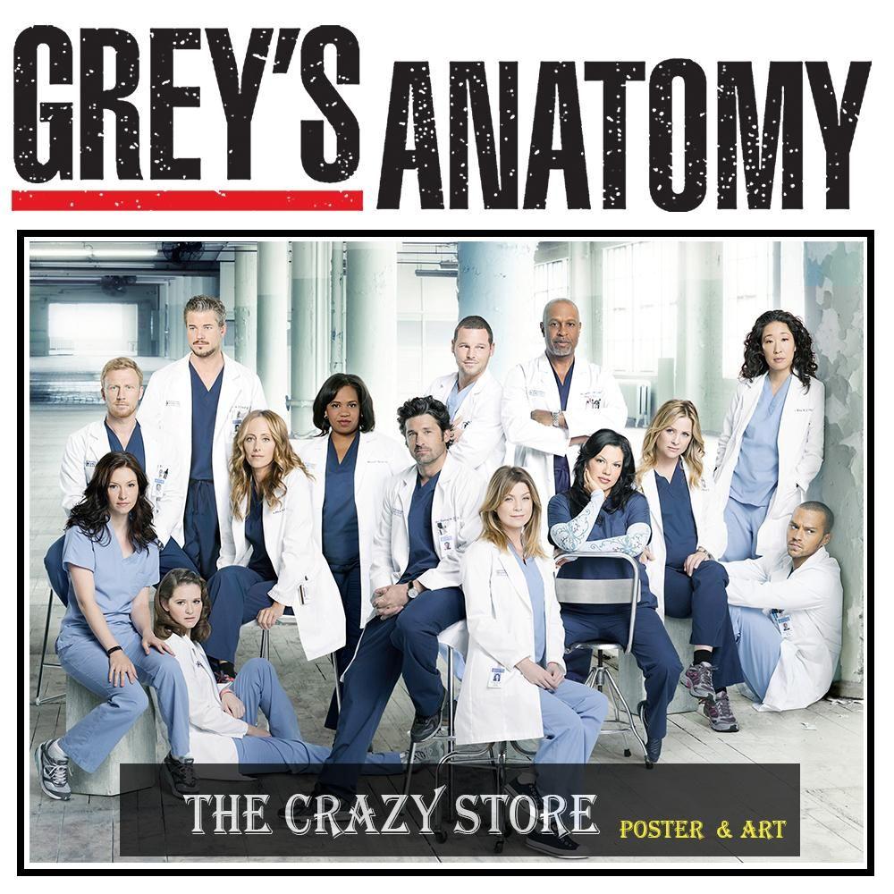 Greys Anatomy Poster Gallery1 — Sceneups
